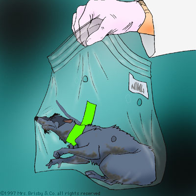 The dead body of Jenner in a zip-top bag, held by a gloved human.